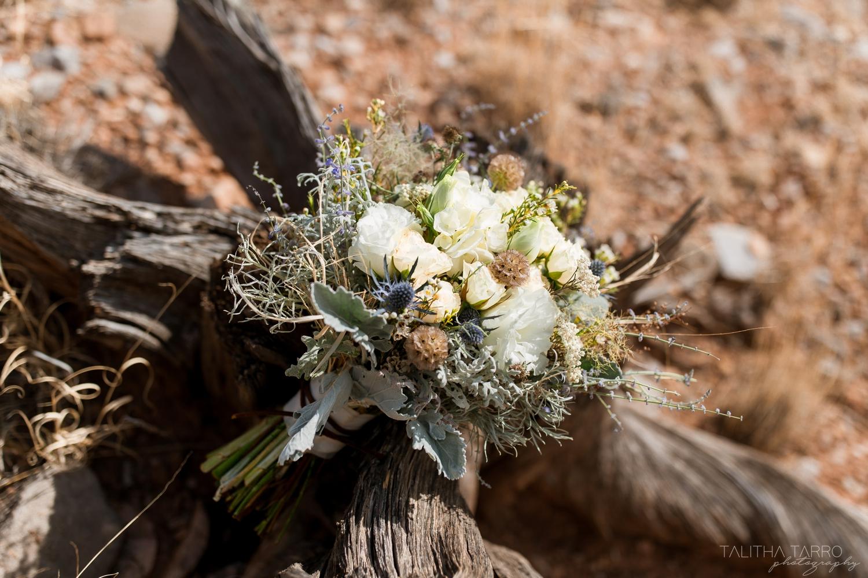 Santa Fe, NM Wedding Elopement