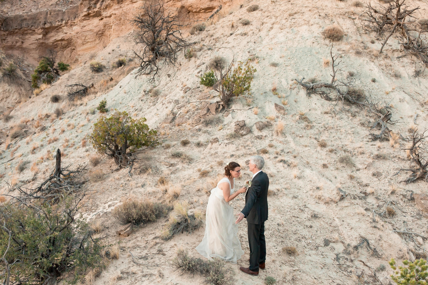 Wedding Elopement in New Mexico