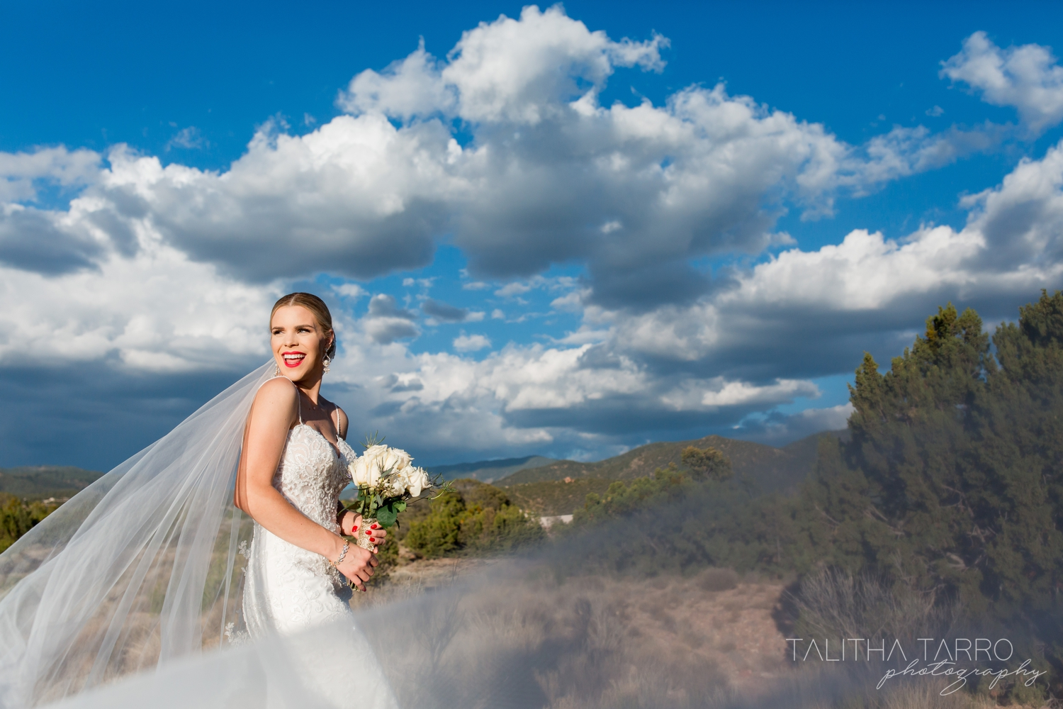 Sangre de Cristo Mountains Wedding Photography